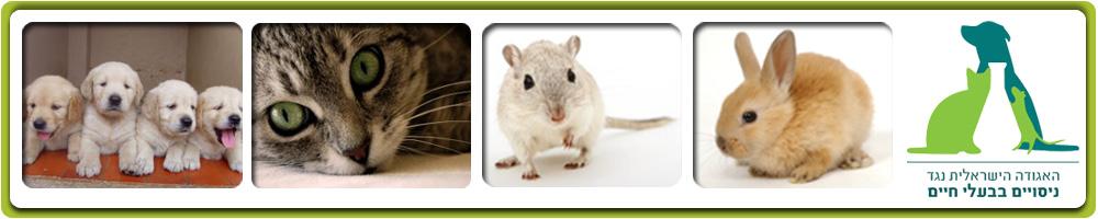 האגודה הישראלית נגד ניסויים בבעלי חיים